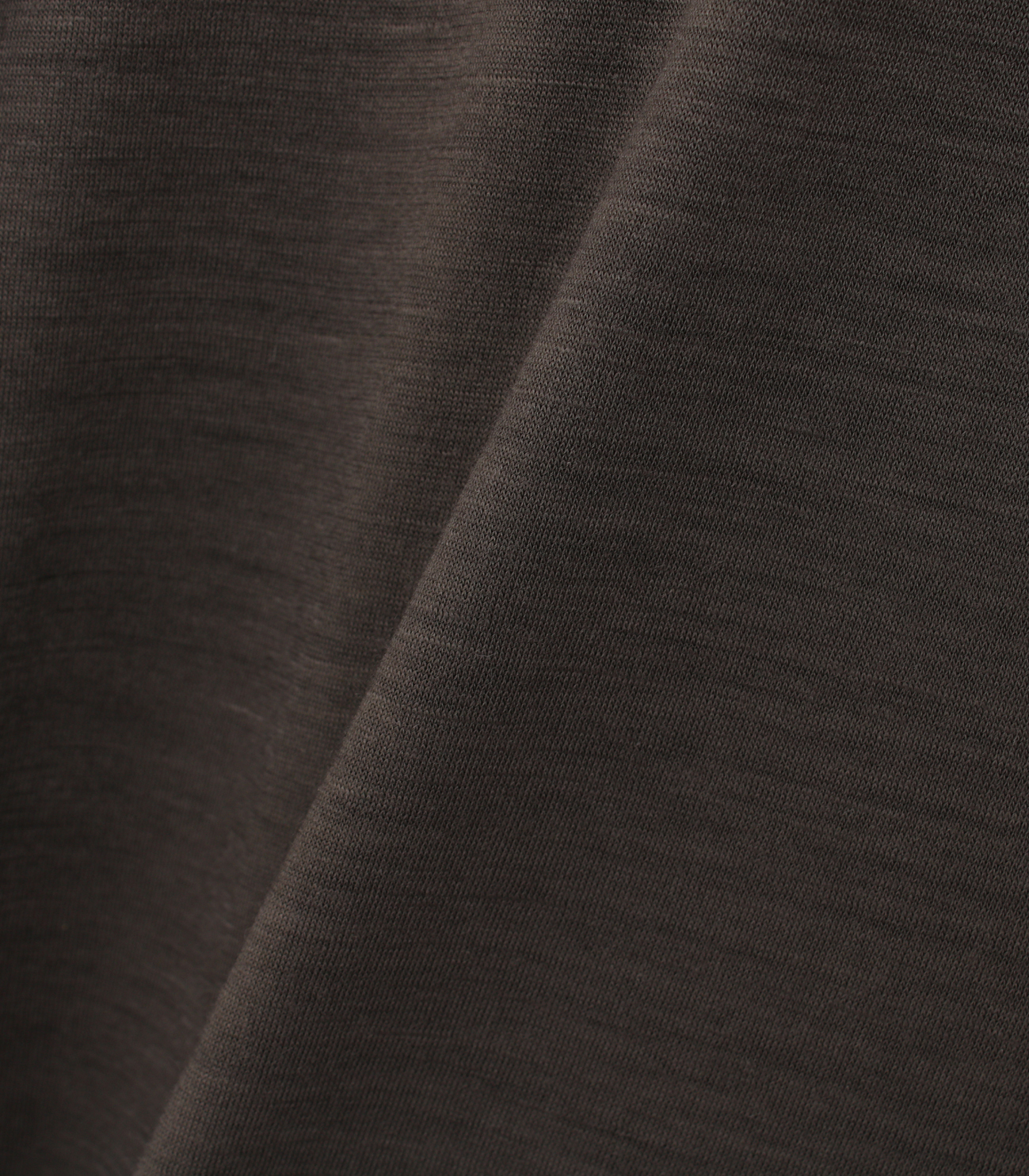 Washable silky dry jersey crewneck 詳細画像 brown 5